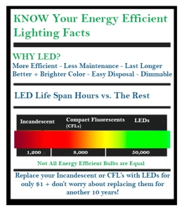 led bulb lighting facts
